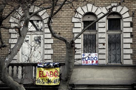Önkormányzati lakás bérlő jogai